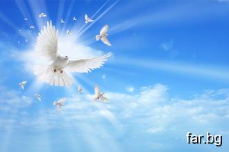 От говора на ангелите се разпръсква светлина