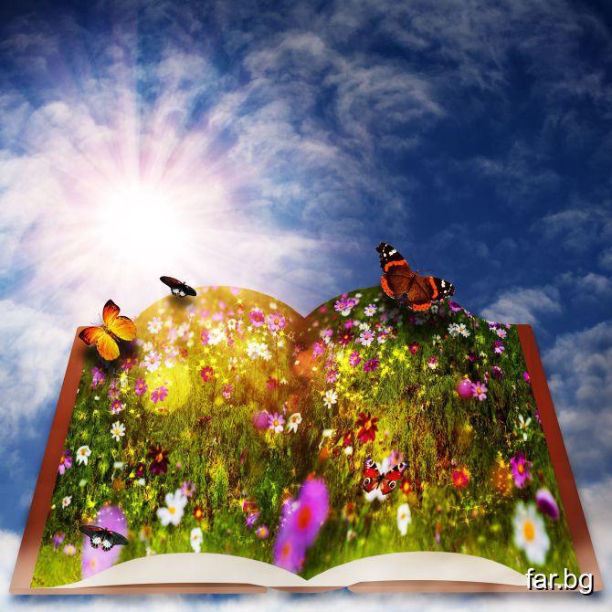 Добри приятели, хубави книги и спокойна съвест