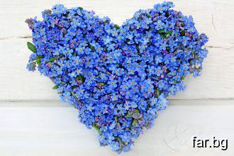 Да обичаш – това значи да бъдеш направен от сълзи