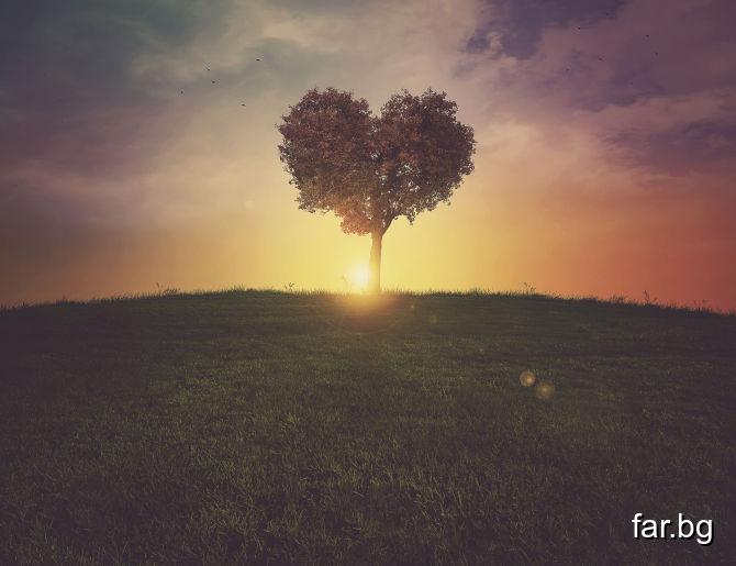 Онзи, който оставя място в сърцето си за другите,