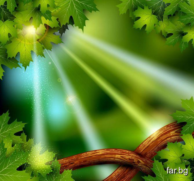 Истинският вълшебен дух живее постоянно в твоето