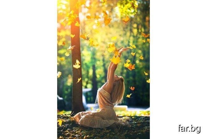 Светлината дава възможност на мисълта да се проявява