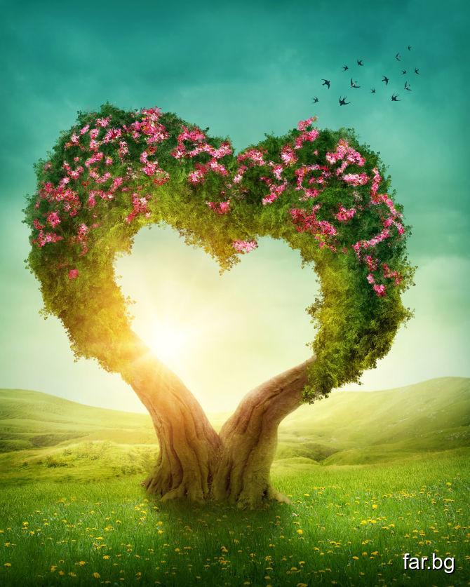 Като те посети, Любовта ще ти донесе всичката си р
