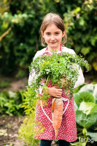 Нека вашият морков послужи за спасението