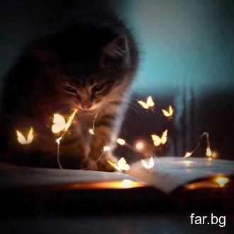 Помнете Мисълта е магическа пръчица, която управля