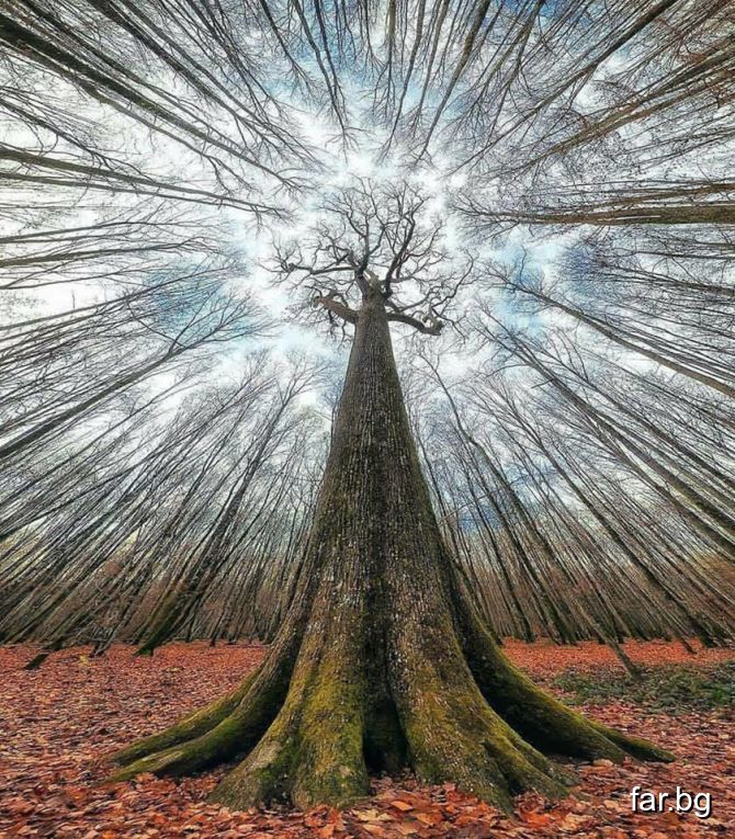 Човешкият Дух и човешката Душа стоят над всичко