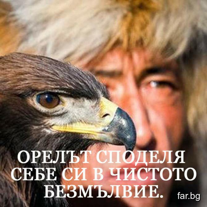 Орелът споделя себе си