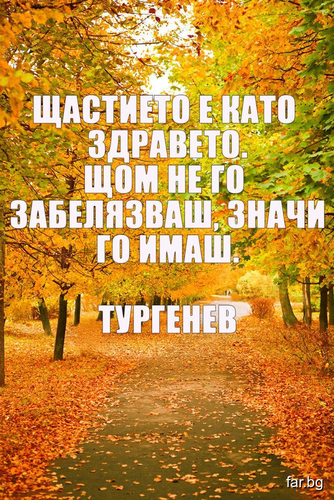 Щастието е като здравето