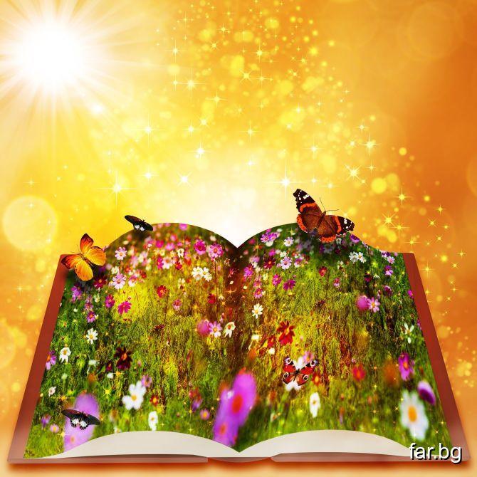 Човек трябва да чете и хубави книги Красивите мисл
