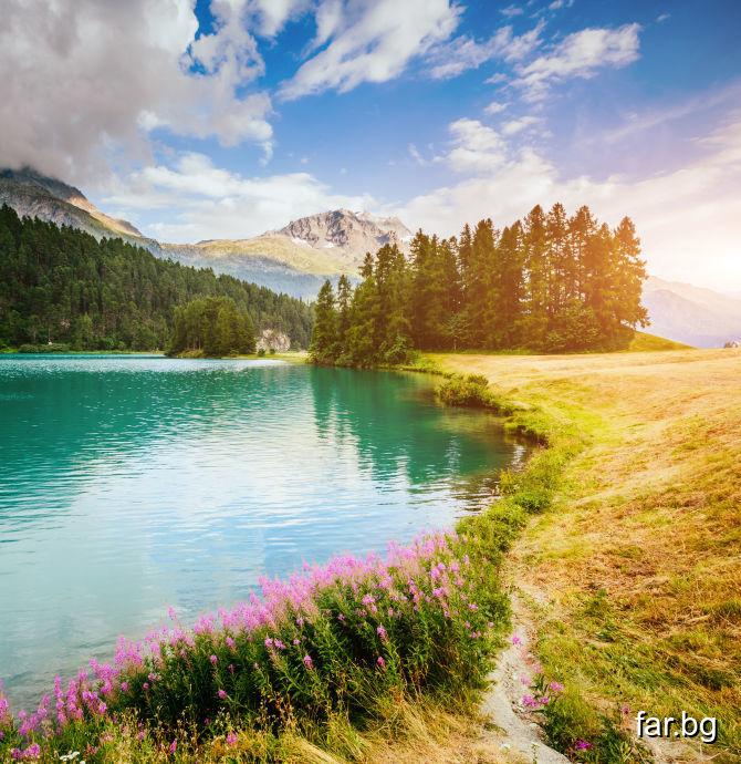Чистотата – това е качество само на Разумния живот