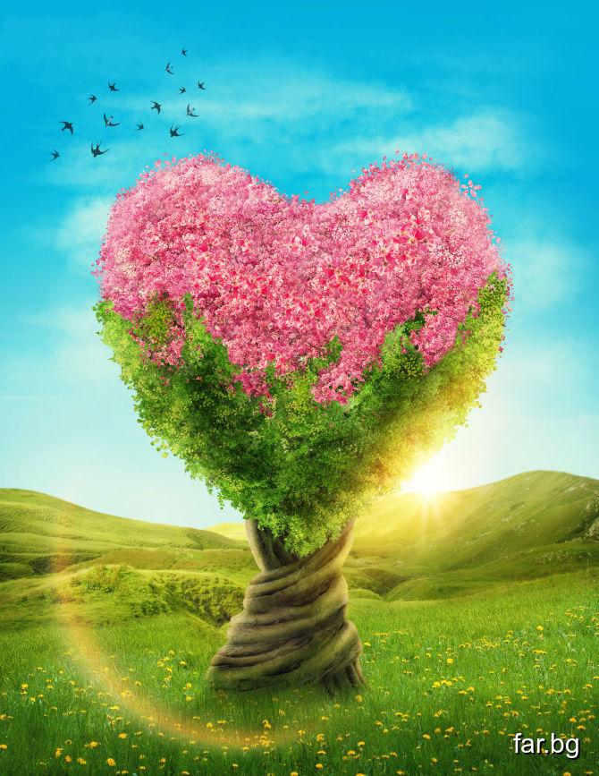 Да даде човек сърцето си на Бога – това е най-голя