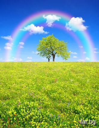 Всяка хубава мисъл, която дава радост, носи весели